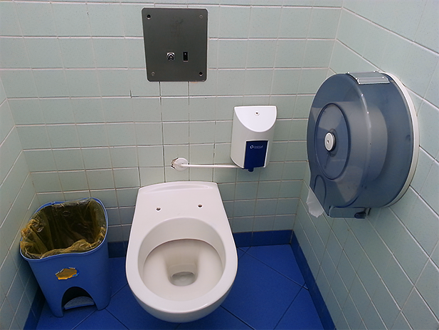 There is a direct correlation between a clean public bathroom and a lack of a toilet seat.